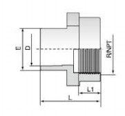 PVDF 对焊管件 内螺纹管接头/NPT螺纹